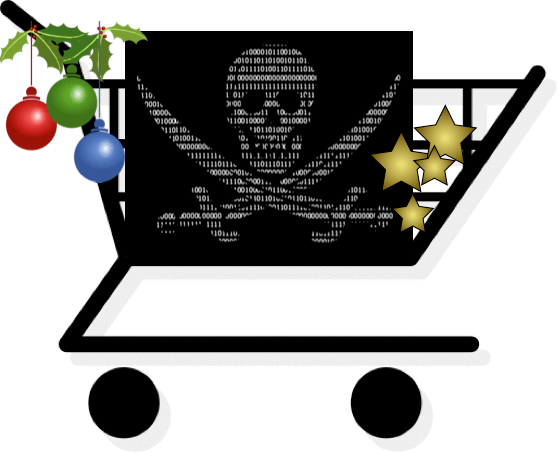 Holiday shopping privacy and security risks