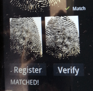 Identity theft fingerprint match